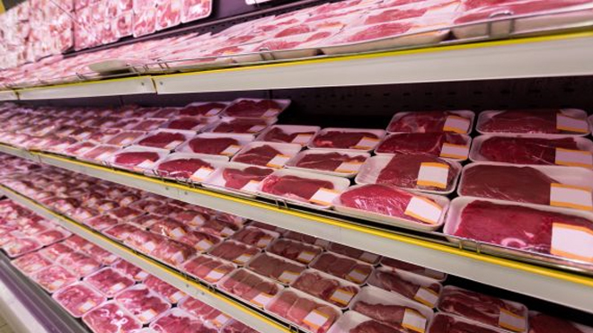 O futuro da carne cultivada