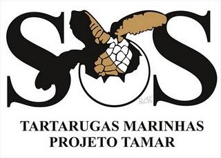 Por fraude, governo federal bloqueia repasses ao Projeto Tamar - CTB