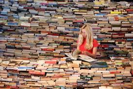 flip-livros-3